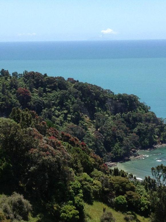 Gorgeous New Zealand